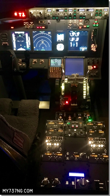 My 737 Sim for Sale 9