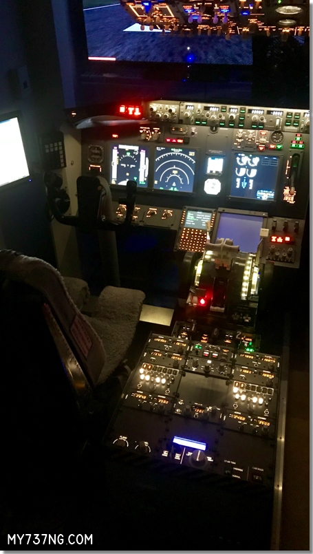 My 737 Sim for Sale 8